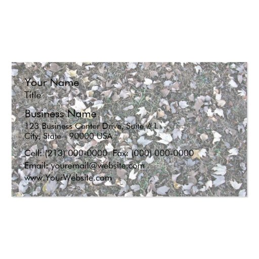 Fallen leaves on grass Double-Sided standard business cards (Pack of 100)