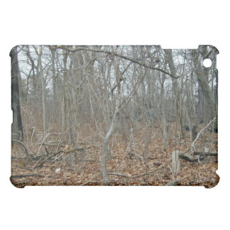 Fallen leaves on the forest floor iPad mini cases