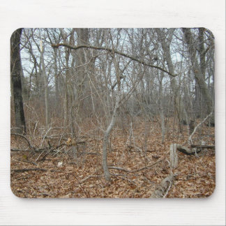 Fallen Leaves On The Forrest Floor Mouse Pad