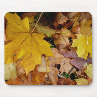 Fallen Maple Leaves Mousepad