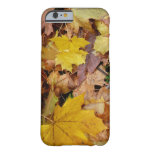 Fallen Maple Leaves Yellow Autumn Nature Barely There iPhone 6 Case