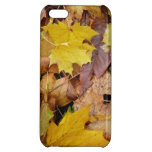 Fallen Maple Leaves Yellow Autumn Nature Cover For iPhone 5C