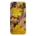 Fallen Maple Leaves Yellow Autumn Nature Cover For iPhone SE/5/5s