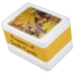 Fallen Maple Leaves Yellow Autumn Nature Drink Cooler
