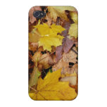 Fallen Maple Leaves Yellow Autumn Nature iPhone 4/4S Case