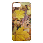 Fallen Maple Leaves Yellow Autumn Nature iPhone 7 Case