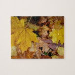 Fallen Maple Leaves Yellow Autumn Nature Jigsaw Puzzle
