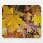 Fallen Maple Leaves Yellow Autumn Nature Mouse Pad