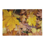 Fallen Maple Leaves Yellow Autumn Nature Placemat