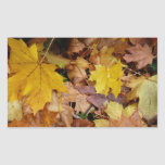 Fallen Maple Leaves Yellow Autumn Nature Rectangular Sticker