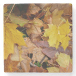 Fallen Maple Leaves Yellow Autumn Nature Stone Coaster