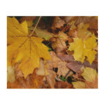 Fallen Maple Leaves Yellow Autumn Nature Wood Wall Decor