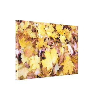 Fallen Maple Tree Leaves Pile in Backyard Canvas