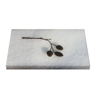 fallen on snow canvas print
