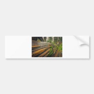 Fallen Redwood Bumper Sticker