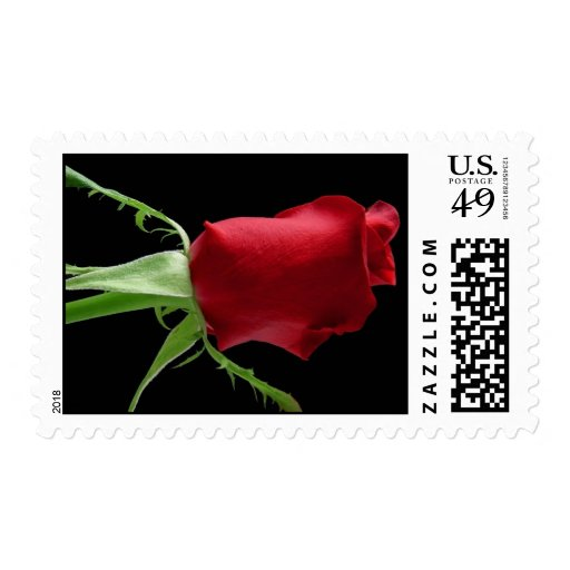 fallen rose postage