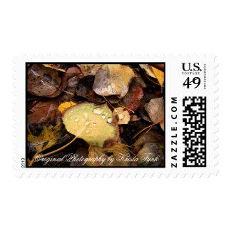 Fallen Splendor Stamp