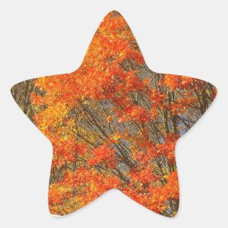 Fallen Star Sticker