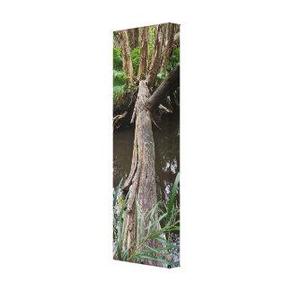 Fallen Tree Bridge Canvas Print