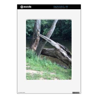 Fallen Tree Decal For iPad