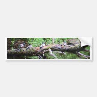 Fallen Tree Duck Perch Bumper Sticker