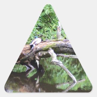 Fallen Tree Duck Perch Triangle Sticker