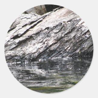 Fallen Tree in Lake Classic Round Sticker