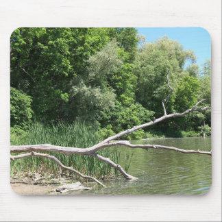 Fallen Tree in Lake Mousepad