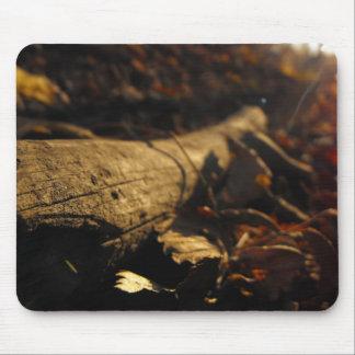 Fallen Tree Mousepad