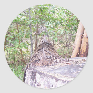 Fallen Tree with Stump in Forest Classic Round Sticker