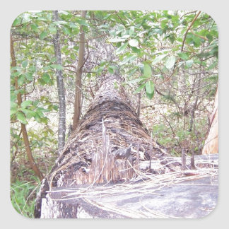 Fallen Tree with Stump in Forest Square Sticker