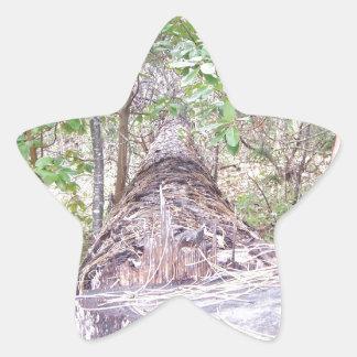 Fallen Tree with Stump in Forest Star Sticker