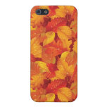 Fallen wet leaves. Autumnal background Case For iPhone 5