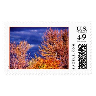 fallfoliage2 postage