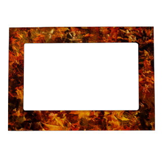 Falling Autumn Leaves Photo Magnetic Frame