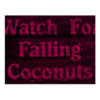 Falling Coconuts Postcard