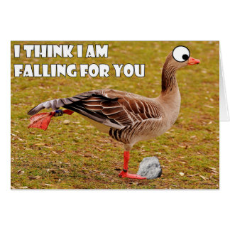 falling for you goose card