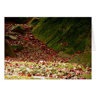 Falling in Fall/ With Poetry by Skye Ryan-Evans Card
