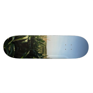 Falling into Alignment Skateboard