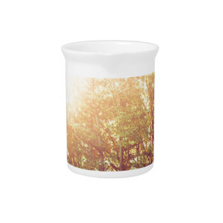 Falling into Fall Drink Pitcher