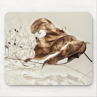 Falling leaf of plane tree mouse pad