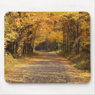 Falling Leaves Mouse Pads