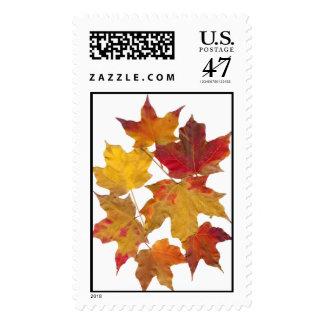 Falling Leaves Postage