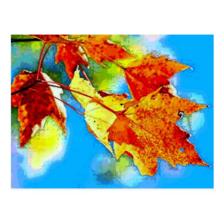 Falling Leaves Postcard