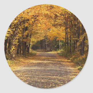 Falling Leaves Round Stickers