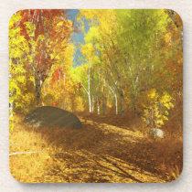 Falling Light Cork Coaster