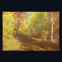 Falling Light Placemat