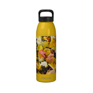 Falling maple leaves on a ground water bottle
