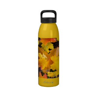 Falling maple leaves on a ground reusable water bottles