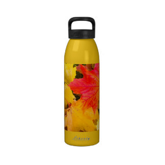 Falling maple leaves on a ground water bottles